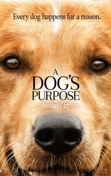 A Dogs Purpose Poster